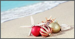beach with ornaments and starfish